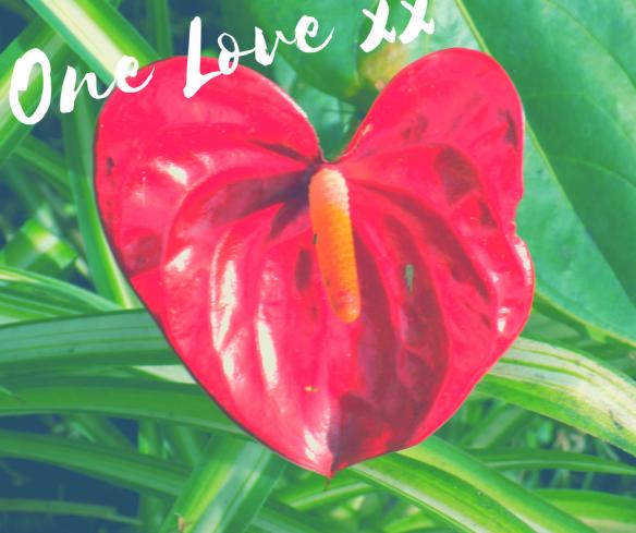 one-love-xx